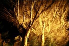 art_photography_24_20090401_1543745496